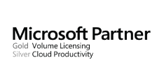 MS Licensing Partners