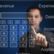 Man looking at a Calculator surrounded by Expenses, Revenue, Profit and Loss